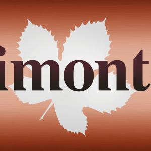 LogoAgrimontana